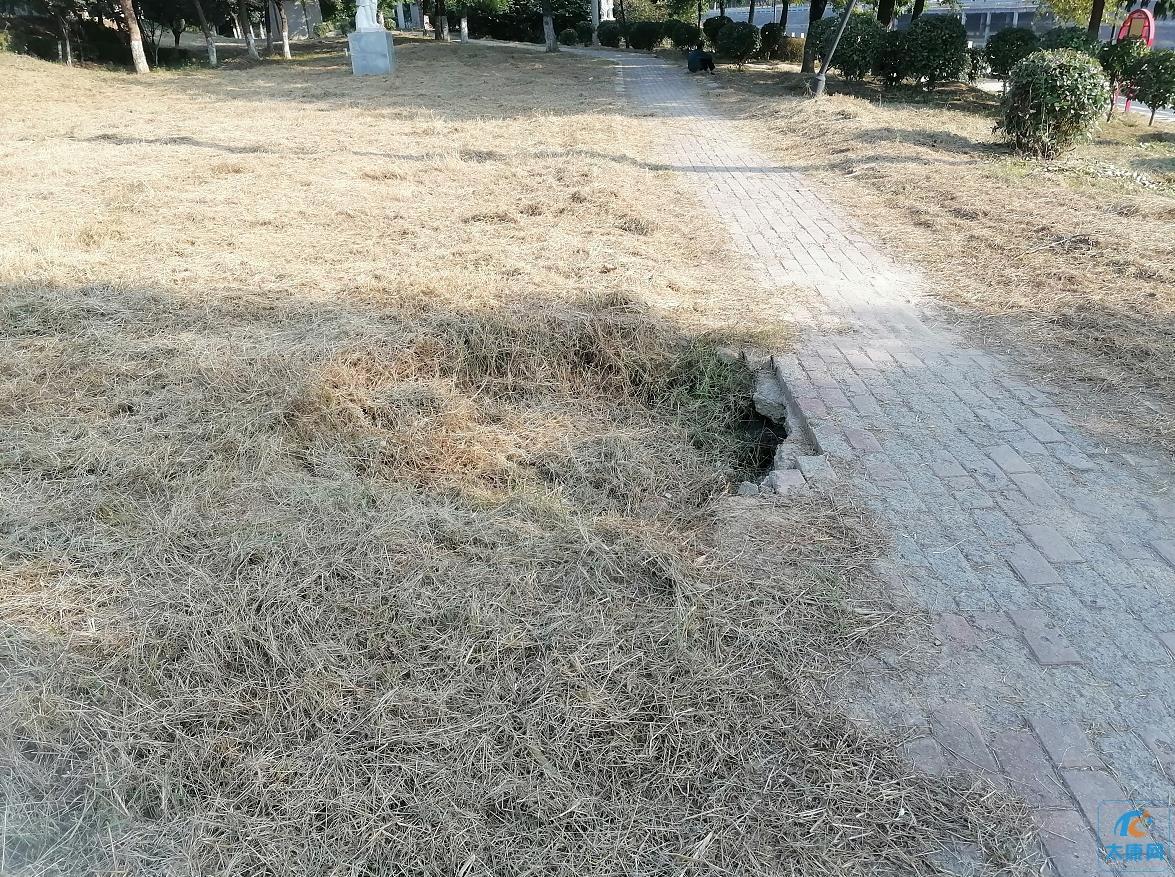 太康老涡河公园,多个设施损坏